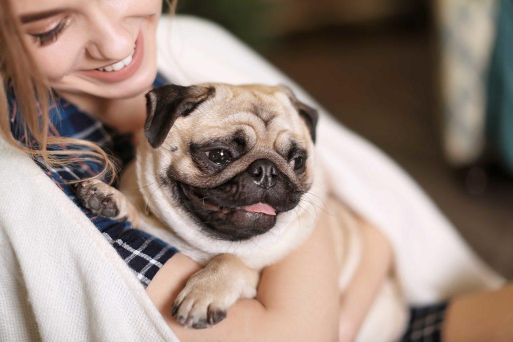planes-de-salud-veterinarios-perros