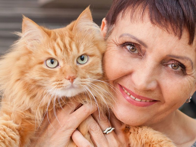 planes-salud-gato-senior